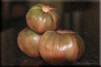 Fall Tomatoes