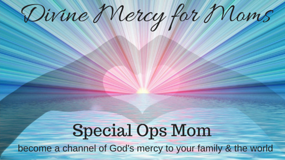 Divine Mercy for Moms special ops logo