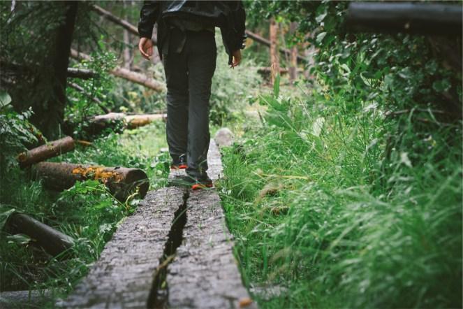 walking-698793