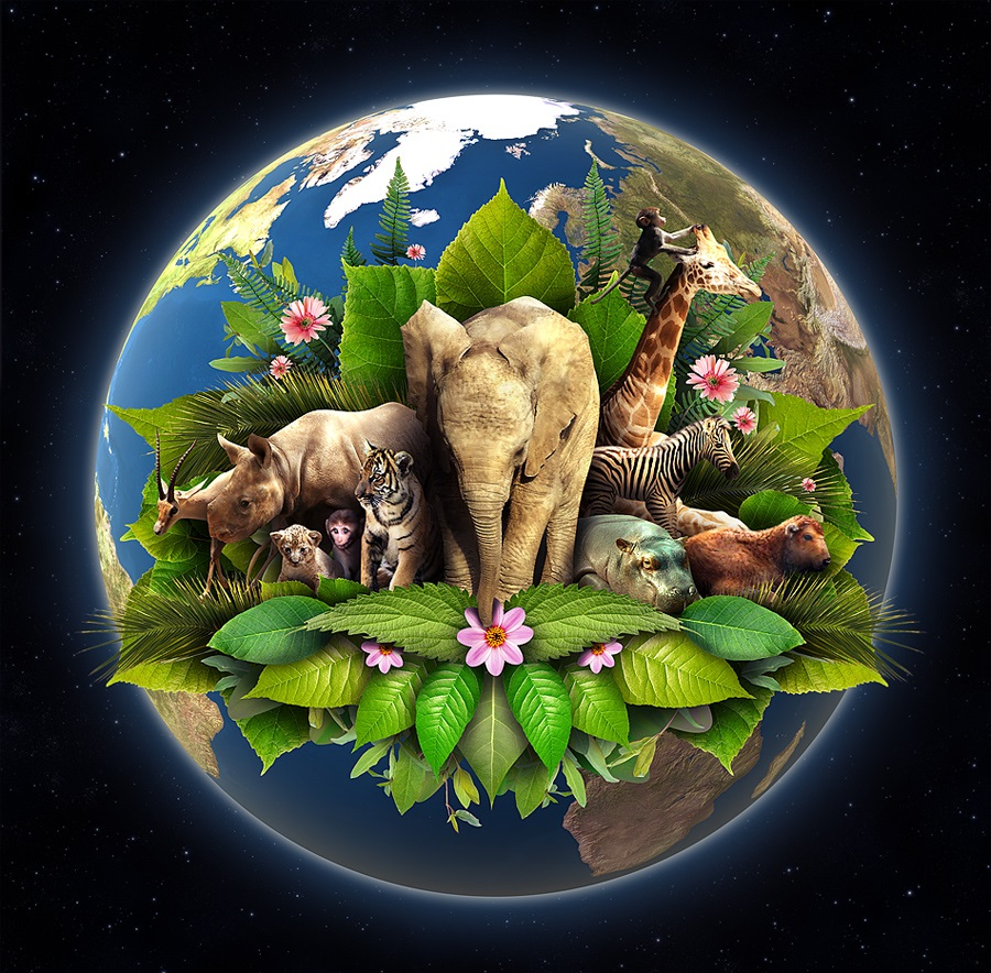 Earth Day, Environment, Nature, From Behind the Pen