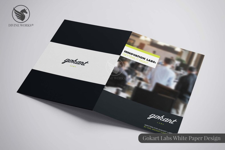 Gokart Labs Brochure Design By Divine Works