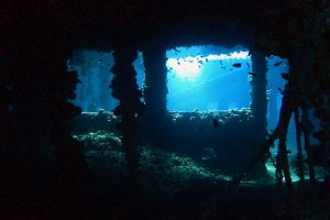 King Cruiser Wreck - Top Phuket Diving Site