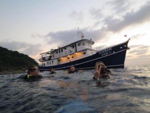 Thailand Tauchsafari nach Similan und Surin Island mit der MV Giamani
