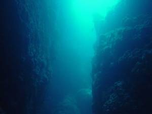 Myanmar Diving at Shark Cave -The Canyon