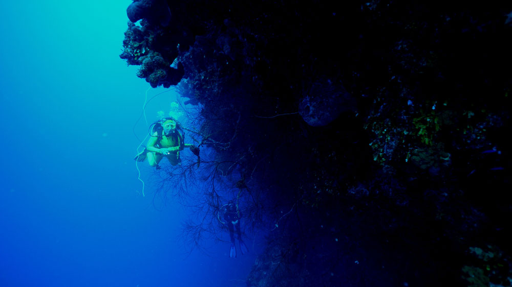 Turks and Caicos - the Wall - scuba diving