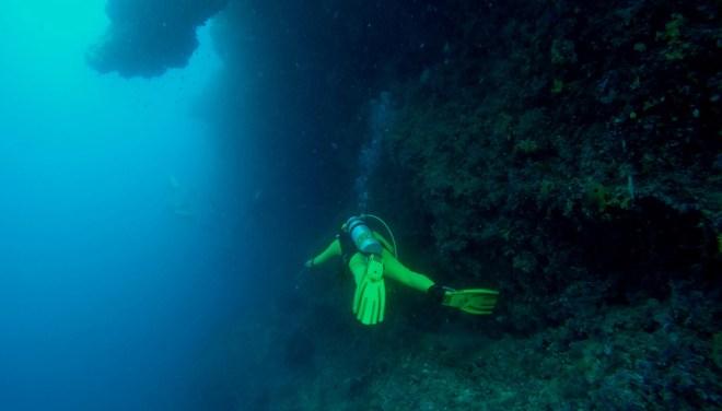 taucherlebnis malediven steilwand