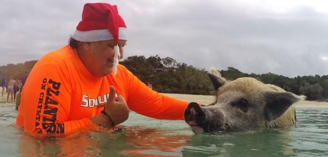 Gerhard glücklich mit den schwimmenden Schweinen