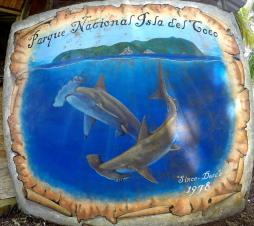 berühmte Hammerhaie