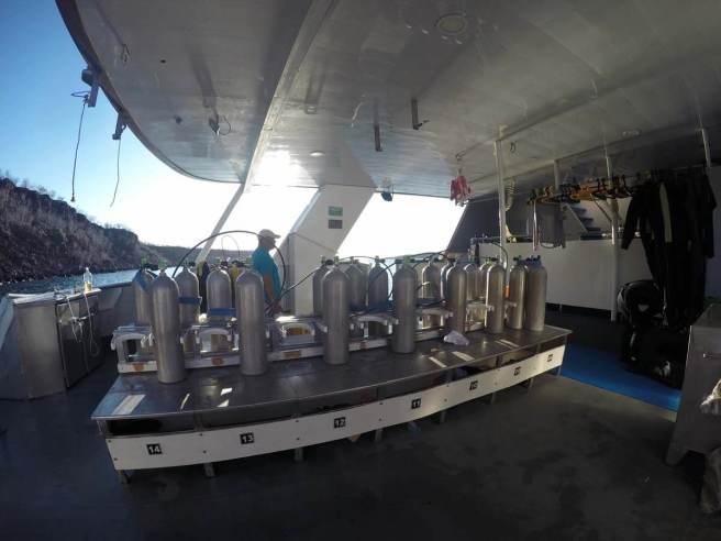 Galapagos Aggressor III (Diving Liveaboard)