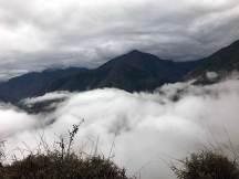 Fahrt durch den Nebel