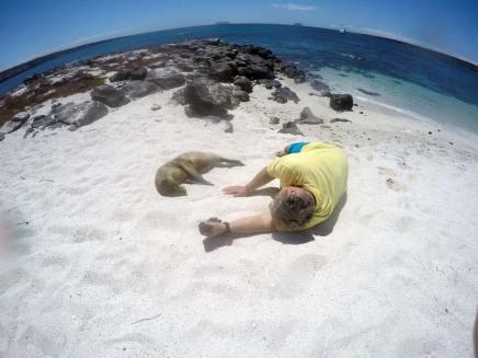 Sandstrand, Seelöwen und einfach Relaxen!