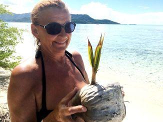 und keimender Kokosnuss