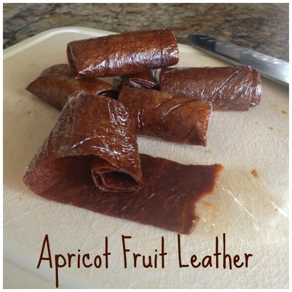 Apricot fruit leather recipe