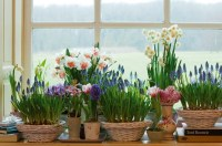 Spring decorating ideas -Refresh your home with spring ...