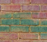 Cleaning Brick and Stone