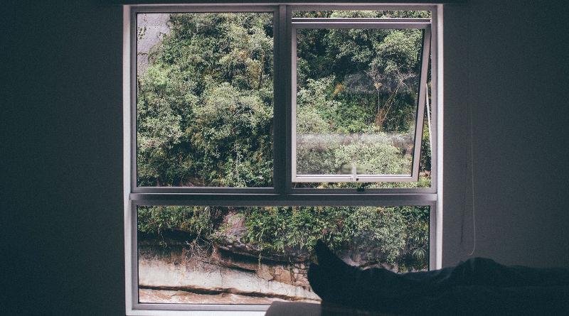filling gaps around window frames
