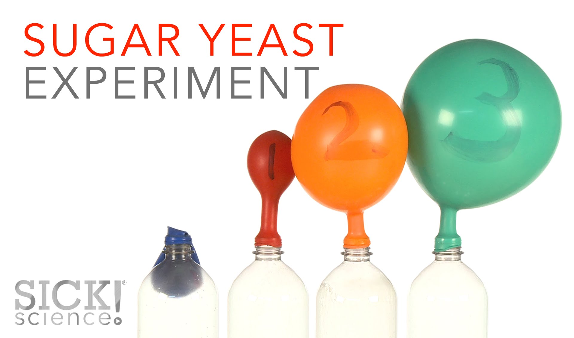 Sugar Yeast Experiment Sick Science 229