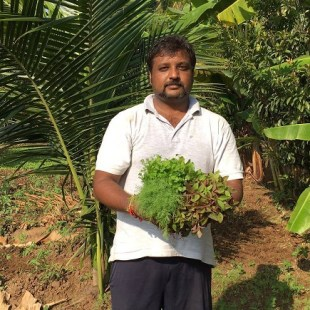 Former Silicon Valley engineer brings innovation to Organic Farming in India