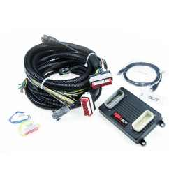 ecotec wiring harnes standalone [ 1200 x 1200 Pixel ]