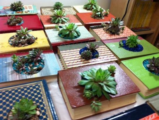 Book Planters Indoor Gardening