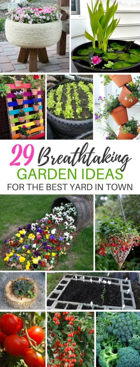These 29 Breathtaking Gardening Ideas Will Make Your Front or Backyard The Best in the Neighborhood!