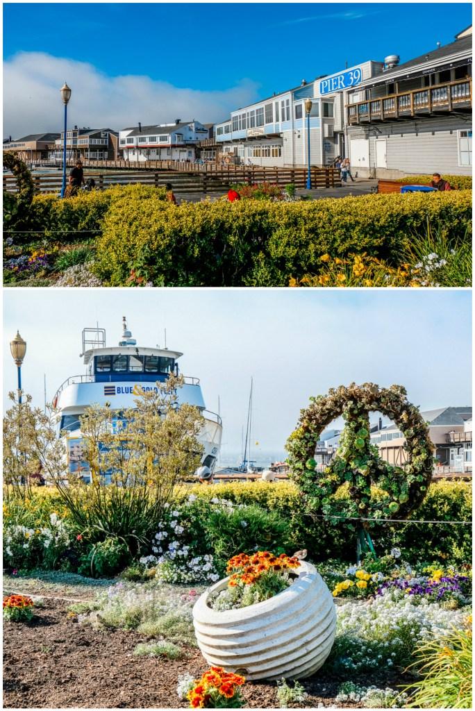 Pier 39 Views San Francisco