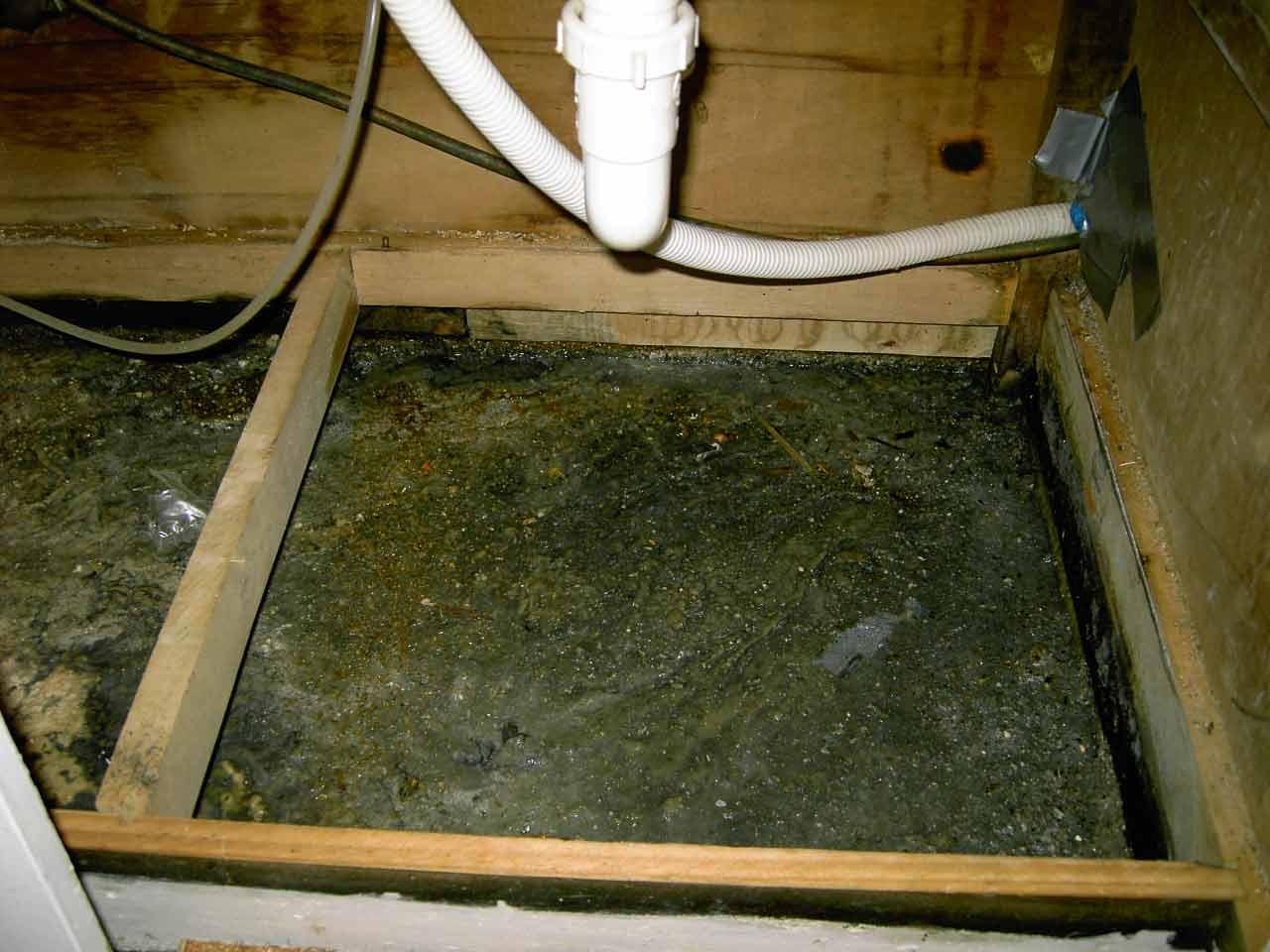 mold under sink diy home improvement