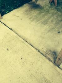 Concrete Patio Options