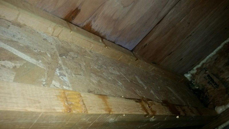 Leaking Basement At Rim Joist Only When It Rains