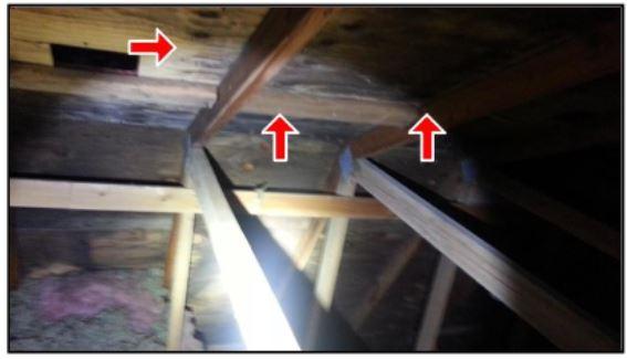 Attic Lumber Plywood With Dark Stians