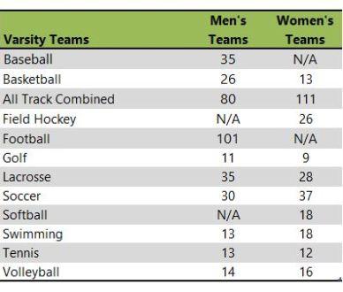 Misericordia Uiversity athletic teams