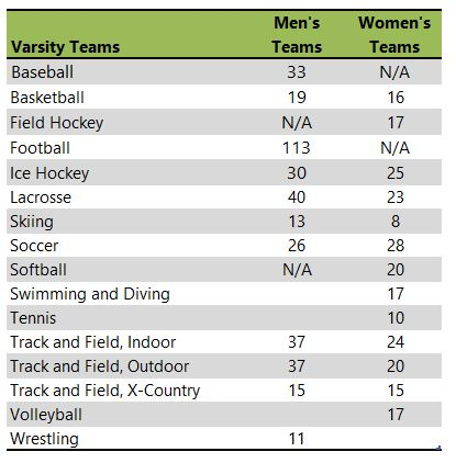 Plymouth State University athletic team listing