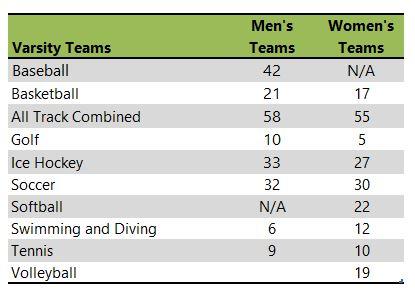 Saint Mary's University of Minnesota athletic teams listing