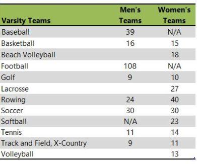 Stetson University athletic teams