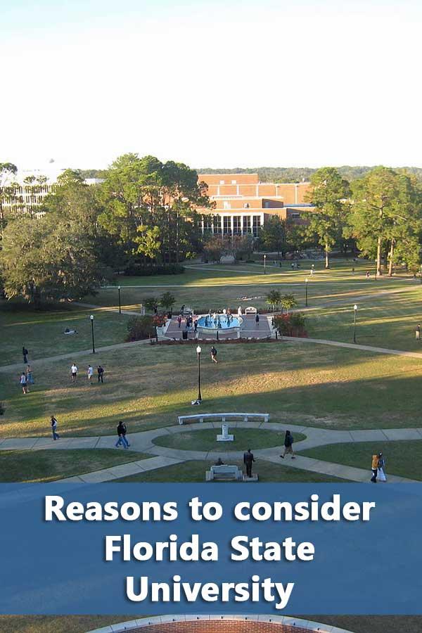 50-50 Profile: Florida State University