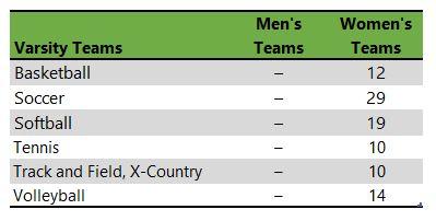 Salem College athletic teams
