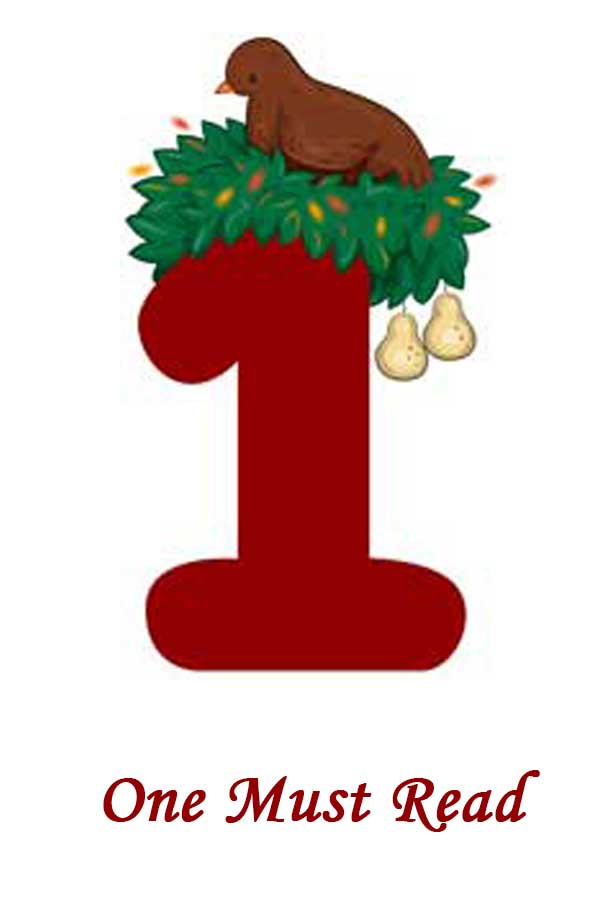 12 Days of Christmas 2018: Day 1