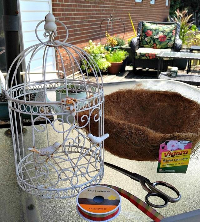 Birdcage-DIY-Planter