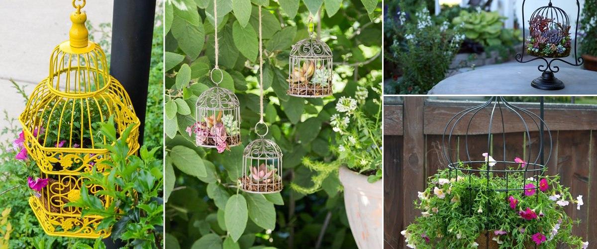 Creative Birdcage Garden Planter Ideas
