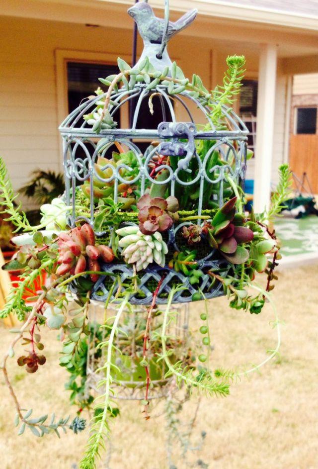 Birdcage Planter Ideas For Garden