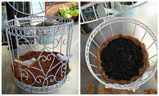 birdcage-planter