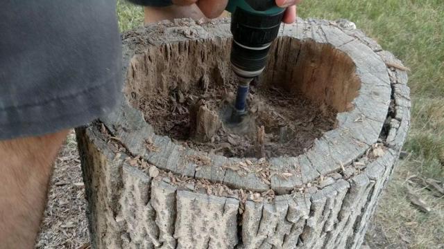 DIY tree stump planter