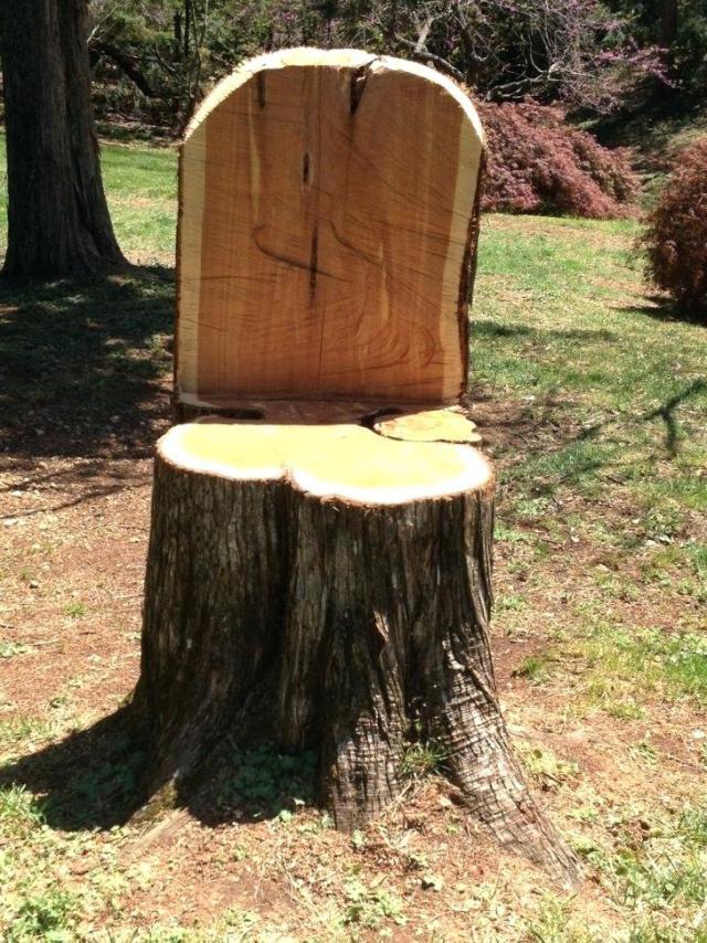 stump-chair-tree
