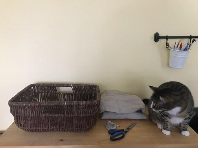 basket-cat-bed