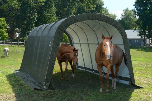 cheap horse stall ideas