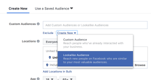 Facebook Look a Like Audiences