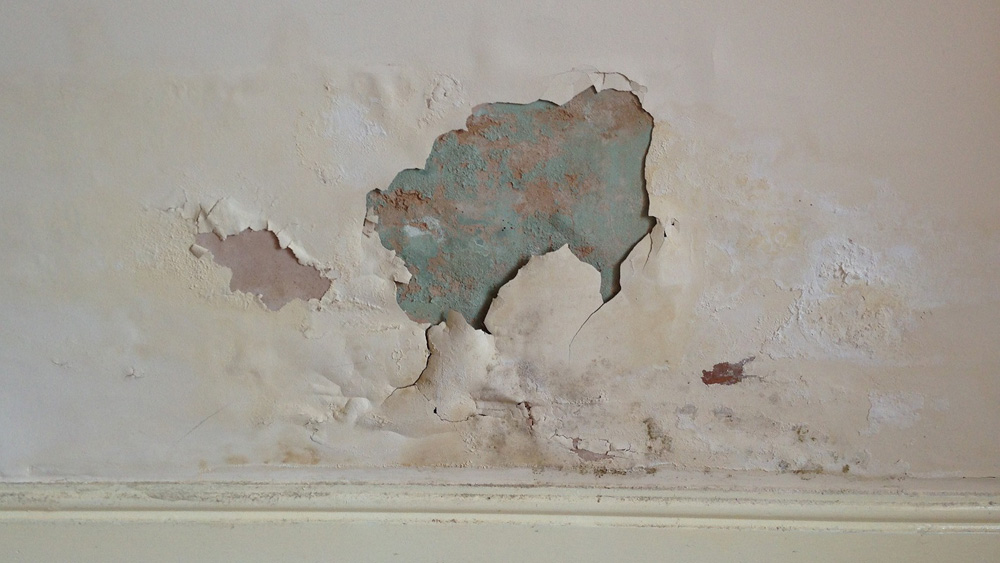 Damp Patches  How to Stop Damp Patches on Internal Walls