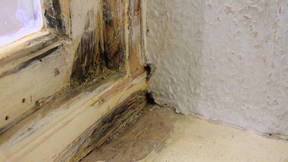 kitchen planning tool charlotte cabinets diagnosing damp | treatment causes of how to ...