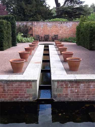 Small Garden Pond Plants