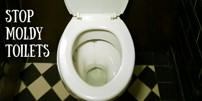 Fantastic This Clever Hack Will Stop Toilet Mold Diy Home Health Pdpeps Interior Chair Design Pdpepsorg